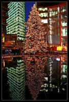 The reflected Christmas Tree by X3RoN