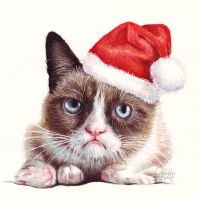Grumpy Cat as Santa, Holiday Portrait by Olechka01