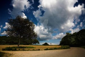 Clouds3 by jfphotography