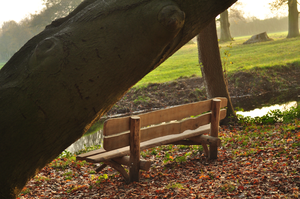 Just a bench. by ReassenGFX