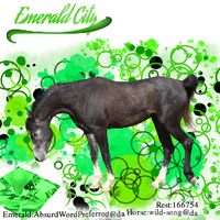 Emerald City Avatar by Cazzie77