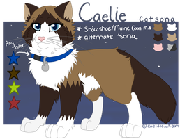 2013 REFERENCE: Catsona by Norjack