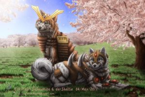 Samurai Dog, Assassin Dog by SheltieWolf