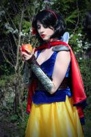 Snow White Warrior Cosplay  - 04 by bulleblue
