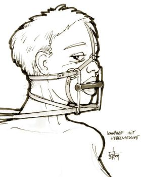 Bridle - levered by veterinarian