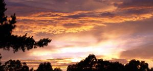 Sunrise From Verandah by FireflyPhotosAust