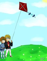 Let's fly some kites by Vannila-cat