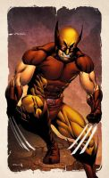 X-Men month Wolverine Colors by RobertAtkins