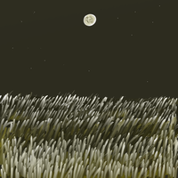 Moon on the Wheat by katiejo911