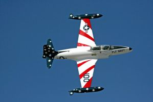 T-33 Fly Navy Pass by Kippenwolf