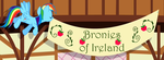 Bronies-of-Ireland by ukegnome