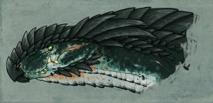 Great Northern or Artic Dragon by commander-salamander