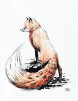 red fox by hubie-the-cat