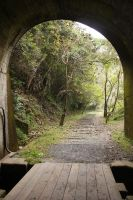 through the tunnel by rayna23