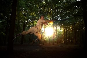 Force your way (Shaolin Kung Fu) by TMProjection