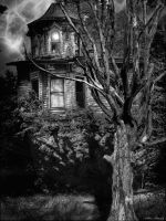 Old House by rsiphotography