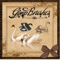 GIMP Brushes | Swan Brushes by TheAngeldove