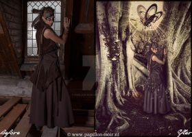 Before and After Other World by Papillon-Noir-Art