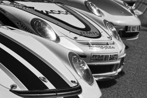 911 Line Up by organicvision