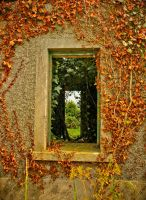 The window of an old house by BELFASTBAP