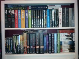 Bookcase - Young Adult by Shadows-r-Light