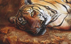 Bengal Tiger Oil Painting by stevegoad
