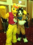 Confuzzled 2015 Photo 3 by Electuroo