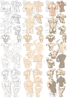 Male Figure Study Process by Soccer20Star