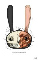 Visible BunnyHead by JackHook