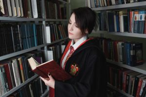 Harry Potter - Gryffindors student by lAmikol