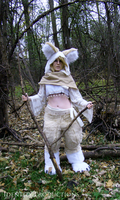 IdentityFox Cosplay (Fennec Fox) 3 by Fennec777