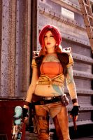Borderlands - taking names and kicking a$$ by Tarah-Rex