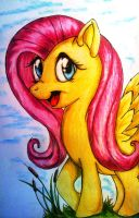 Joyful Fluttershy by Tomek2289
