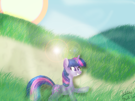 TwilightLOLSparkle by DzikaTamara