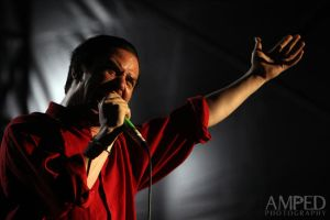 Faith no More at Soundwave II by AmpedPhotography