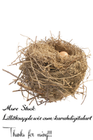 Nest Stock Png by KarahRobinson-Art