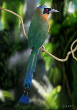 Blue-crowned Motmot (Digital Painting) by Rick-Lilley