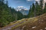 Mount Rainier 33 by arnaudperret