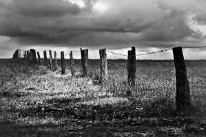 The Fence by AdamsWife