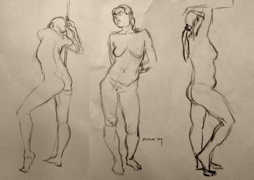 Life Drawing 6 by nictey