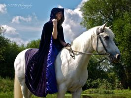 A Lady and her horse 3 by gee231205
