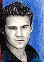 David Boreanaz mini-portrait by whu-wei