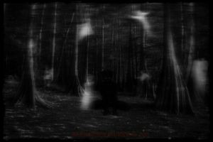 Welcome to my Forest of Souls by ravenaudron