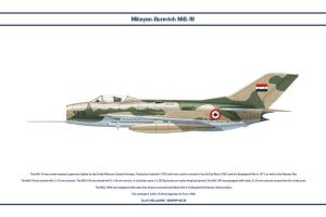 MiG-19 Egypt 3 by WS-Clave