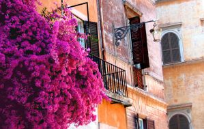 Flowers in Rome Color by Poofiemus