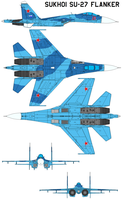 Sukhoi Su-27 Flanker by bagera3005
