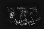 Unnatural Selection collage by mashimero