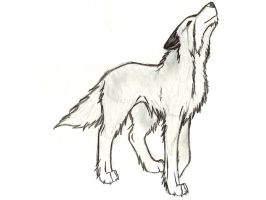 another black and white wolf by FeNnEc-FoX13