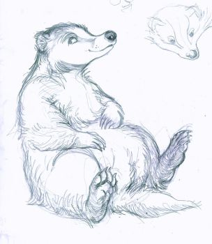 justa badger by mushyZ