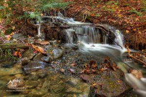 HDR Autumn Forest Falls by Nebey